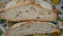 pane con pasta madre - interno